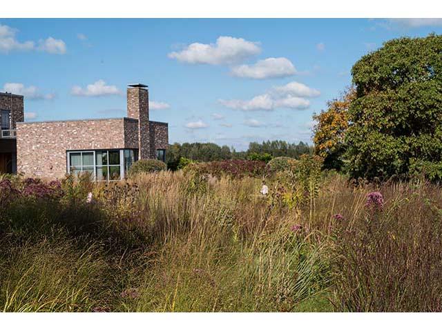 Natuurlijk Achterhoek, tuinen van Piet Oudolf, Hummelo, Gemeente Bronckhorst
