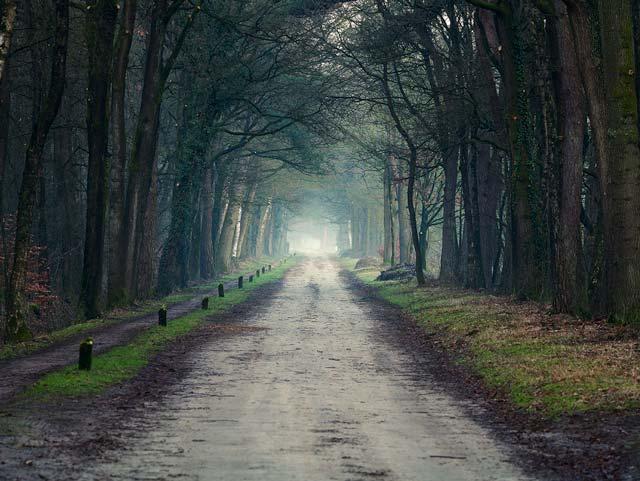 Natuurlijk Achterhoek, gemeente Berkelland, zandweg, Landgoed Beekvliet
